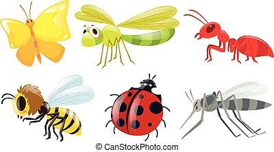 diferente, tipos, de, insectos