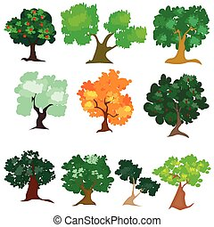 différent, arbre, espèce, illustration