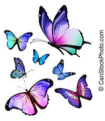 différent, beaucoup, voler, isolé, papillons, fond, blanc
