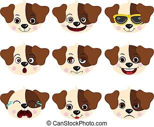 différent, caractéristique, faces, expressions, chiens