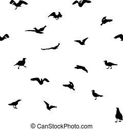 différent, ensemble, aller, voler, prendre, mouette, manger, seamless, silhouettes., pattern., fermé.