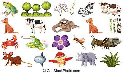 différent, ensemble, animaux
