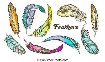 différent, ensemble, couleur, plumes, vecteur, encre