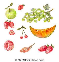 différent, ensemble, dessiné, sain, doux, isolé, nourriture., aquarelle, paint., white., fruits, russe, illlustrations