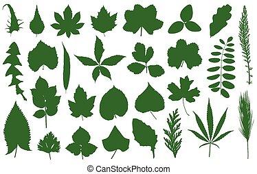 différent, ensemble, feuilles