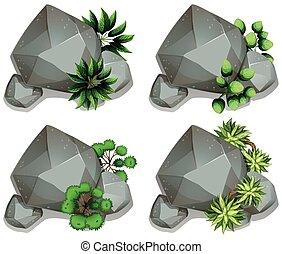 différent, ensemble, feuilles, rochers