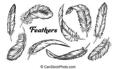 différent, ensemble, plumes, collection, vecteur, encre