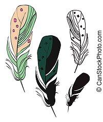 différent, ensemble, plumes, isolé, fond, blanc