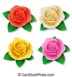 différent, ensemble, roses, réaliste, vecteur, colors., graphiques