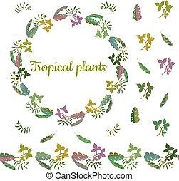 différent, fait, coloré, border., feuilles, couronne, seamless, exotique, brush., horizontal, plants., interminable