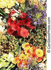 différent, fleur, couleurs, arrangement