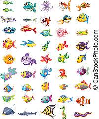 différent, groupe, poissons