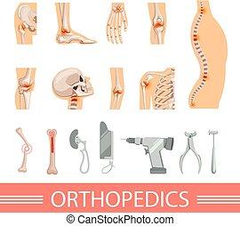 différent, icônes, set., squelette, accessoires, orthopédique, humain, os, monde médical