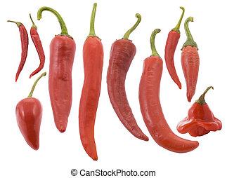 différent, poivre, chaud, types, piment, rouges
