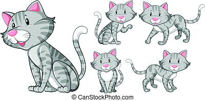 Different actions of gray cat illustration