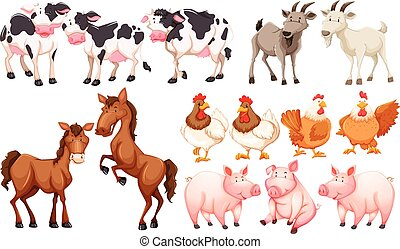 Different animals in the farm