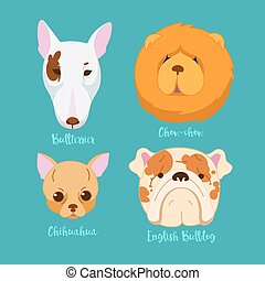 Different breeds of dogs.