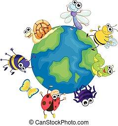 Different bugs around the world