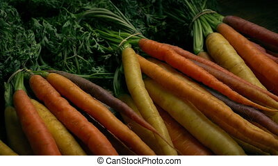 Different Colored Fresh Carrots - Tracking shot moving...