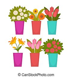 Different colorful flowers in vases - Vector illustration of...