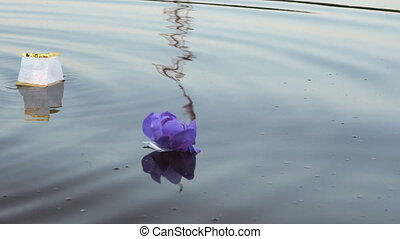 Different colors water lilies with candle on water - Festive...