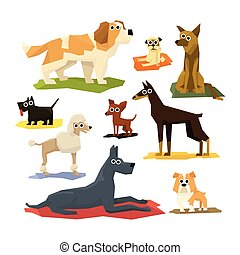 Different Dog Breeds Collection Of Bright Color Simplified...