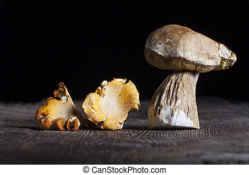 different edible mushrooms on wood