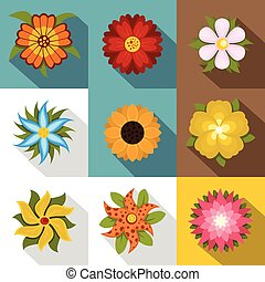 Different flowers icons set, flat style