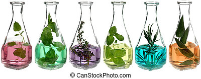 different herbs in glass bottles with coloured liquid
