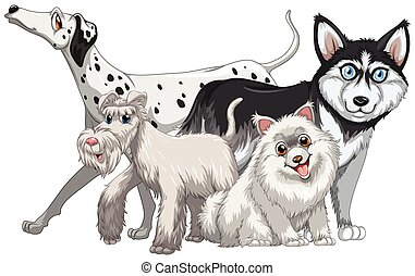 Different kind of cute dogs