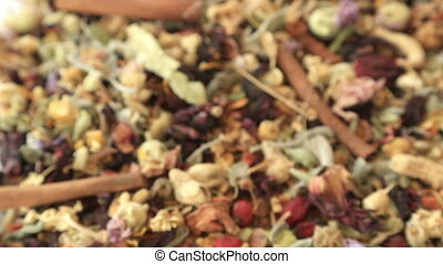 Different kind of healing herbs