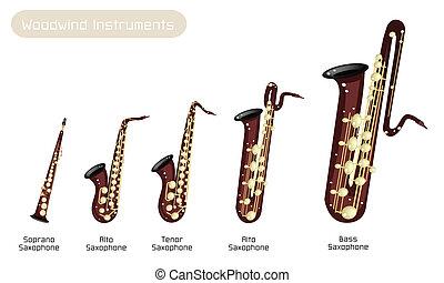 Various Kind of Brown Vintage Woodwind Instrumen, Soprano Saxophone, Alto Saxophone, Tenor Saxophone, Baritone Saxophone and Bass Saxophone Isolated on White Background