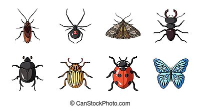 Different kinds of insects icons in set collection for design. Insect arthropod vector symbol stock web illustration.