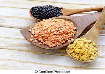 different kinds of lentils