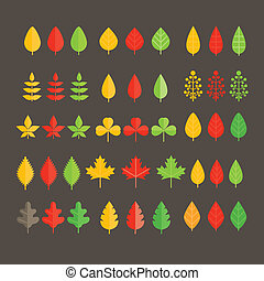Different leaf collection isolated on white