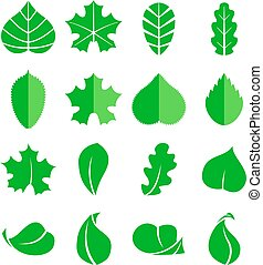 Different leaf set. Vector icons. Design eco elements isolate on white background