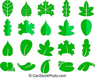 Different leaf set. Vector icons. Design eco elements isolate on white background. Green leaf tree, illustration of natural leaf for your web design