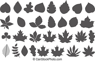 Different leaves vector silhouettes collection. Leaves isolated on white