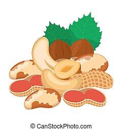 Different nuts set. Snack mix - peanut, brazil nut, cashew, hazelnut.
