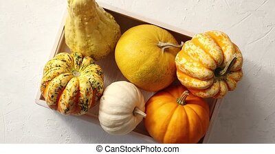Different pumpkins laid in box - From above view of orange...