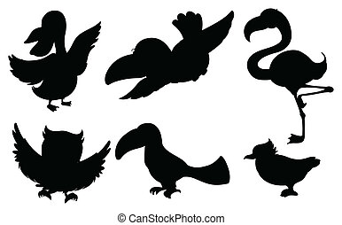 Different silhouettes of birds