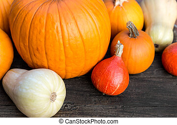 Different sorts of Pumpkins on a wooden Table