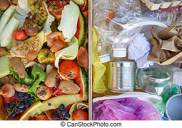 Different trash. Garbage sorting: iron, paper, plastic, domestic waste for compost from fruits and vegetables.