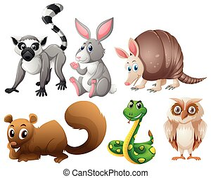 Different types of animals illustration