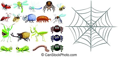 Different types of bugs and spiderweb
