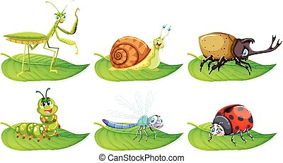 Different types of bugs on green leaves