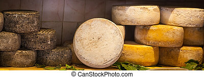 Different types of cheese on the shelf
