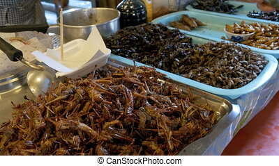 Different types of Cooked insects on a plate at food market. Asia, Thailand, Pattaya