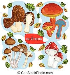 Different types of mushrooms vector illustration