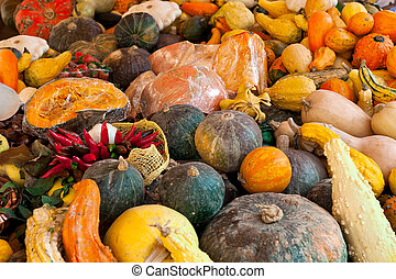 Different types of pumpkins on the stall.